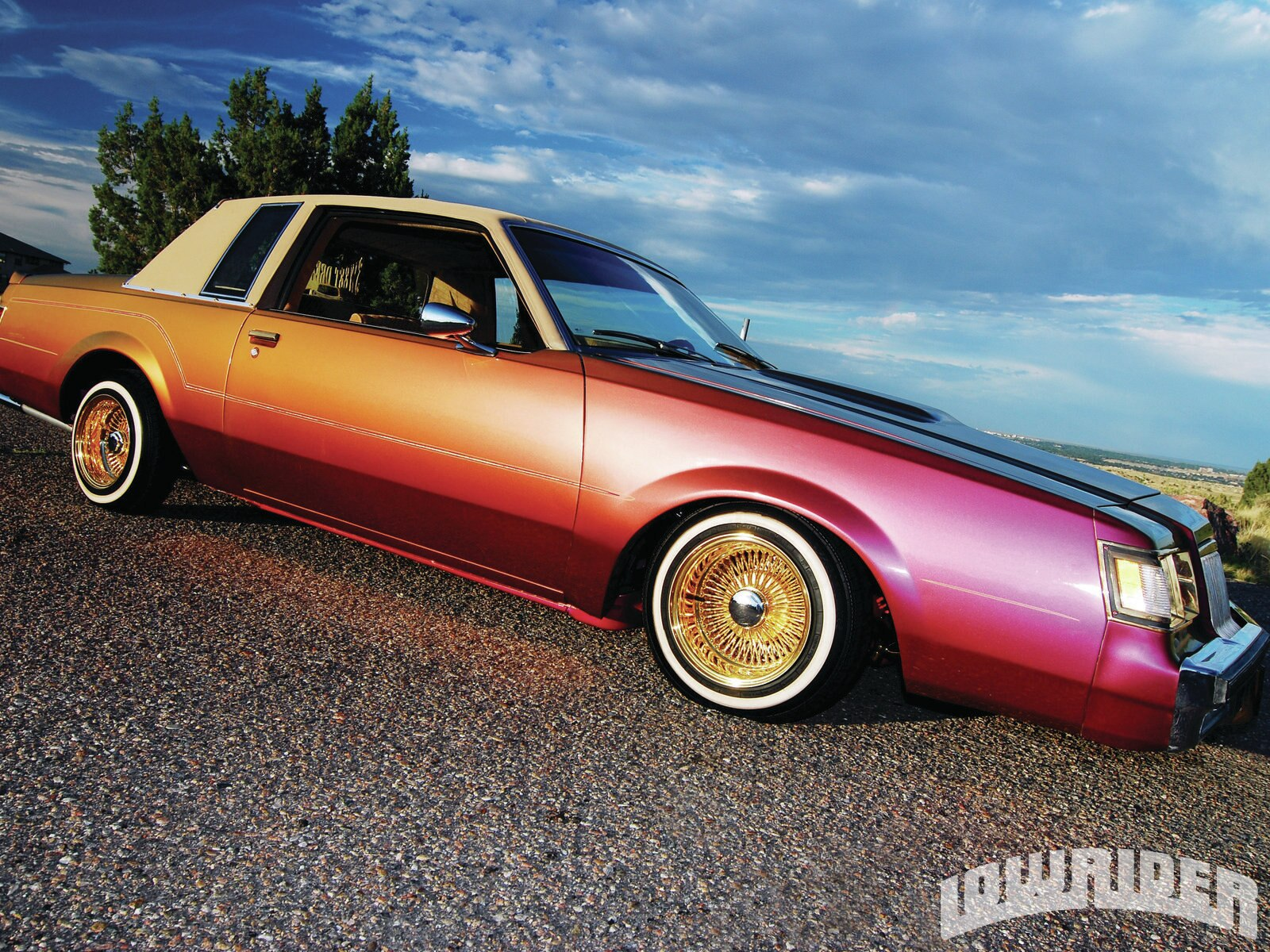 lrmp_1108_01_z-1984_buick_regal-side_view2