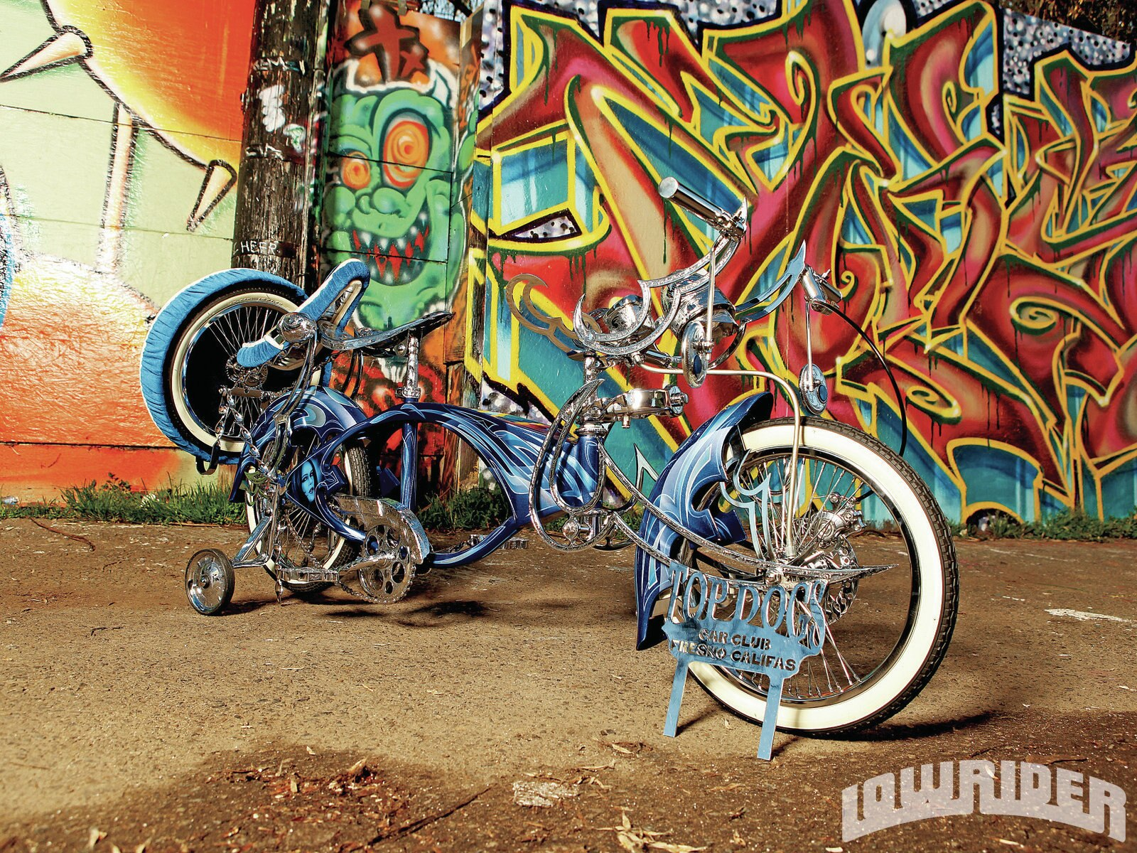 1205-lrmp-01-o-custom-lowrider-bicycle-side-view1