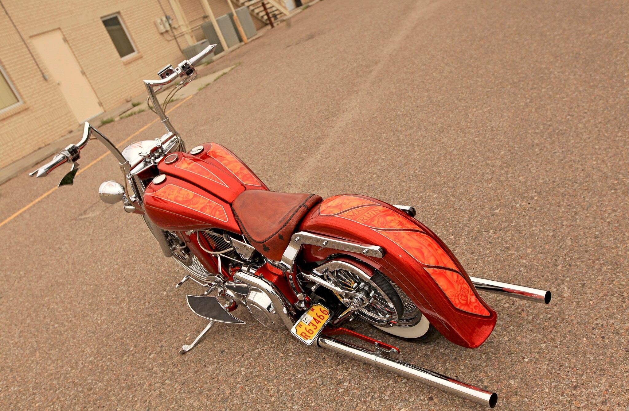 1987 Harley-Davidson Softail - Man's Ruin