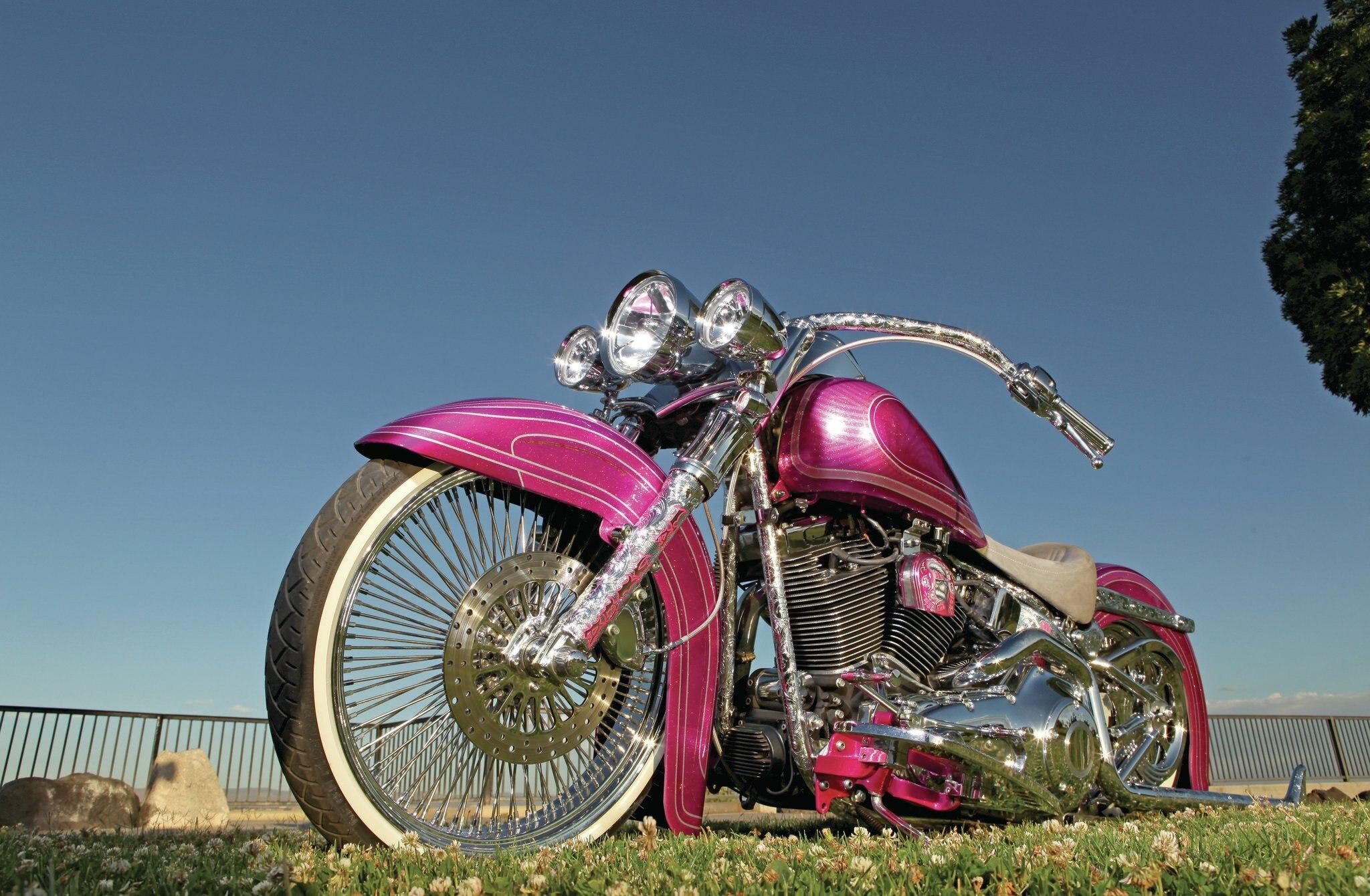 Harley St Jerome >> 2003 Harley-Davidson Heritage Softail - La Cabrona