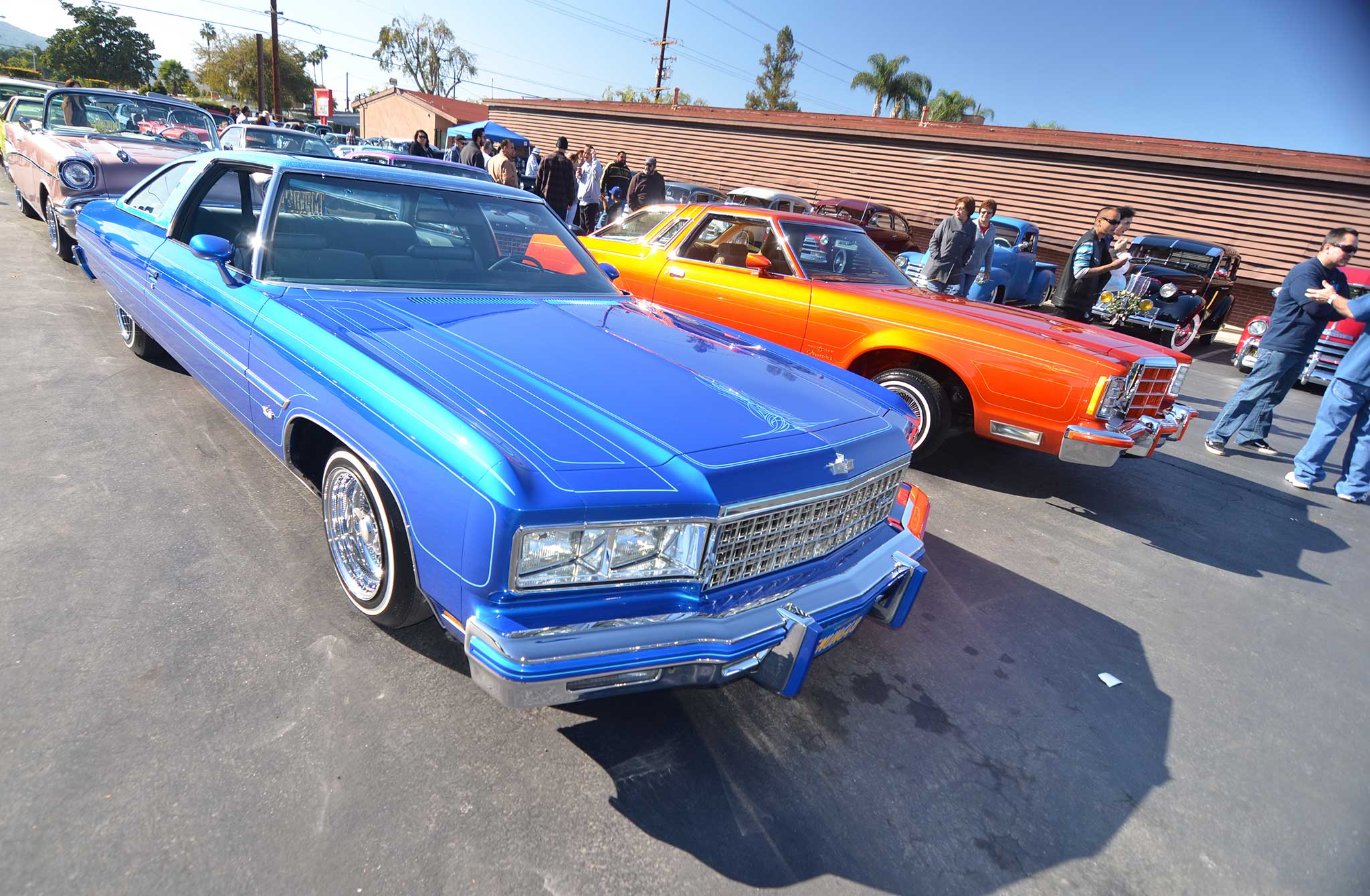 New Years Day Custom Car & Bike Show