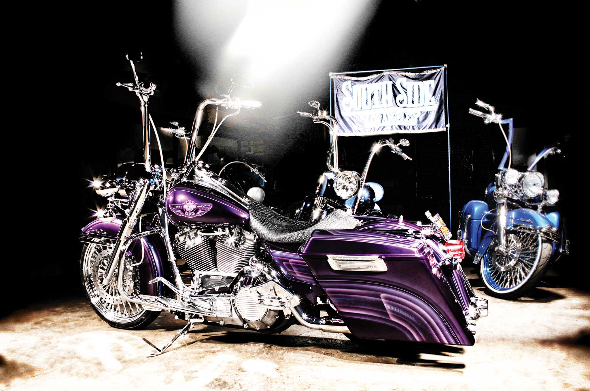 2001 Harley Davidson Road King Mando Lowrider 2 14 Pictures