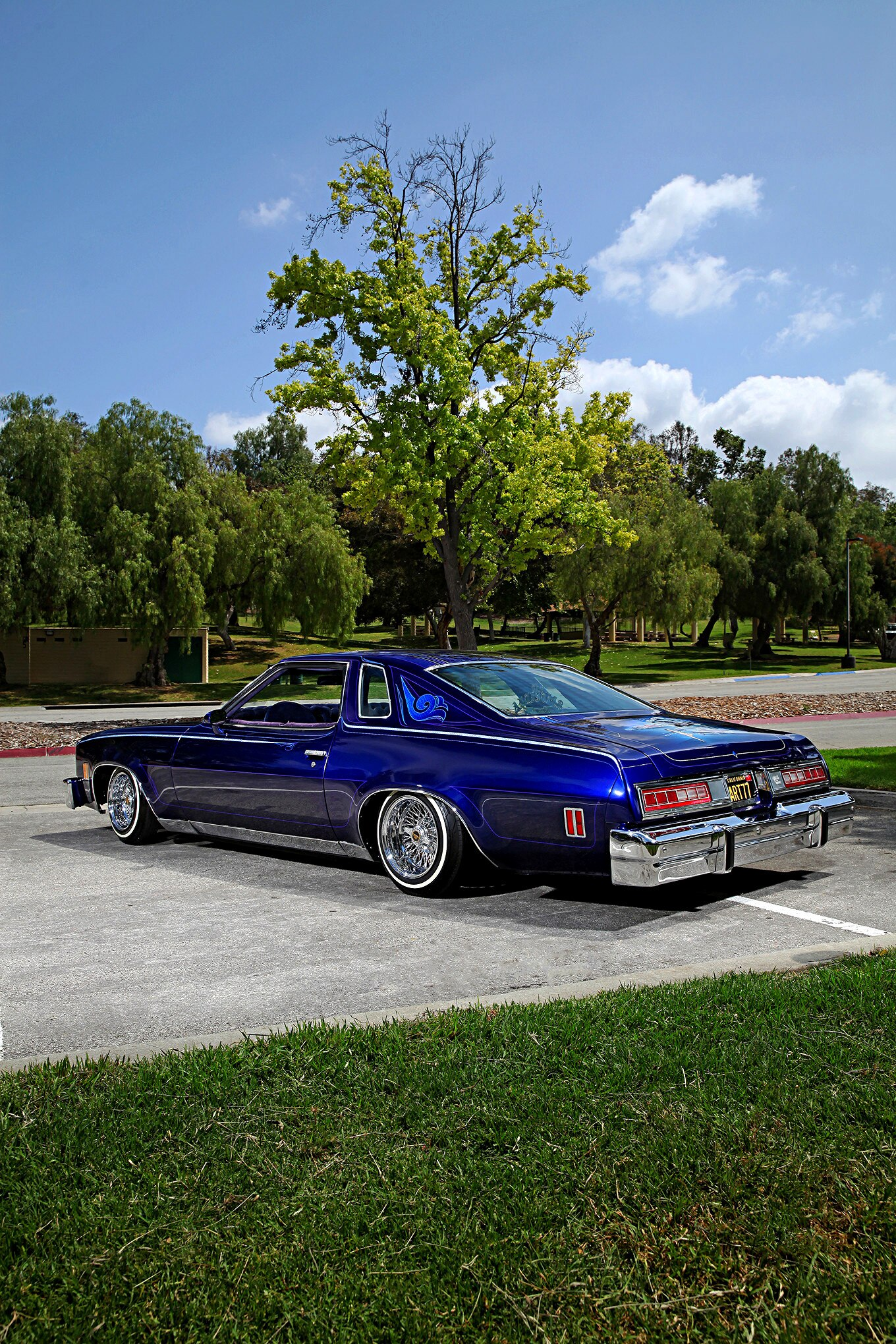 I 77 Chevy >> Longterm Relationship with a '77 Chevy Malibu Classic