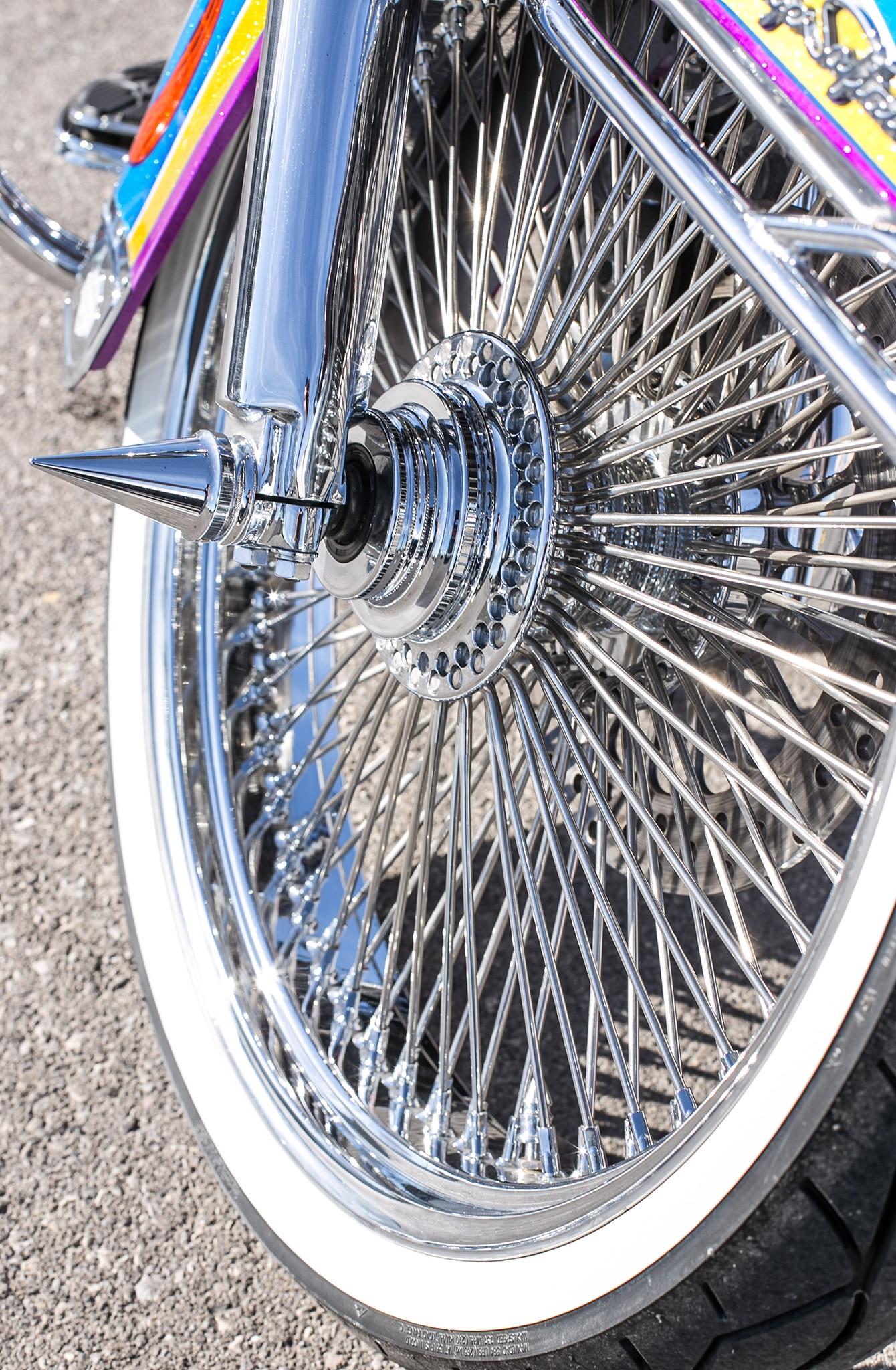 Low Rider S >> 1995 Harley-Davidson Heritage Softail - Plaque Buildup