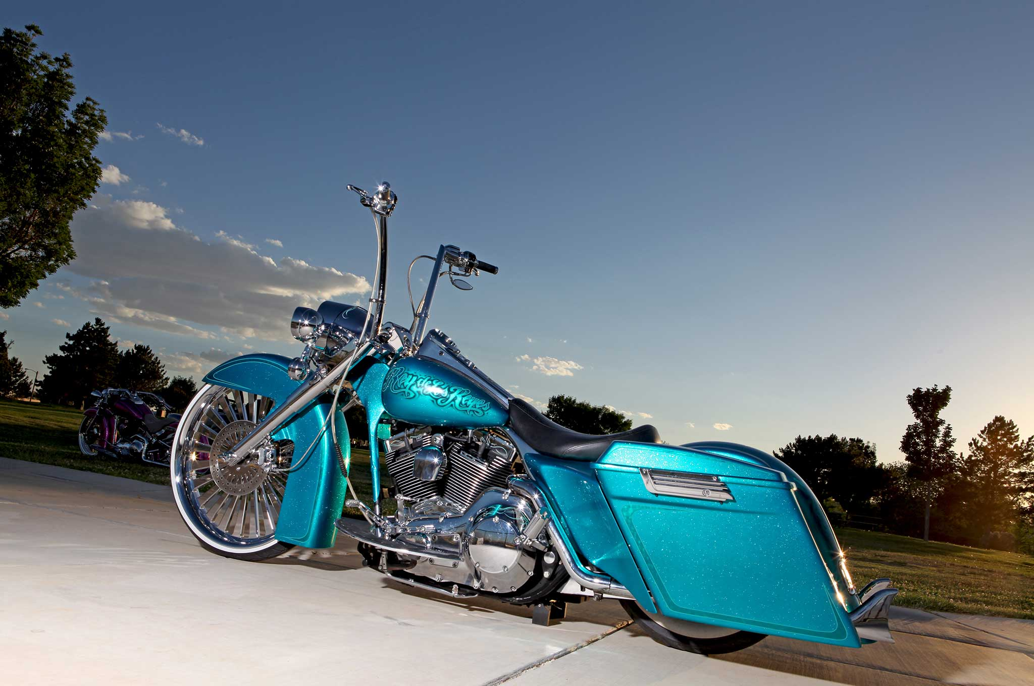 2004 Harley Davidson Road King King Of The Road Lowrider
