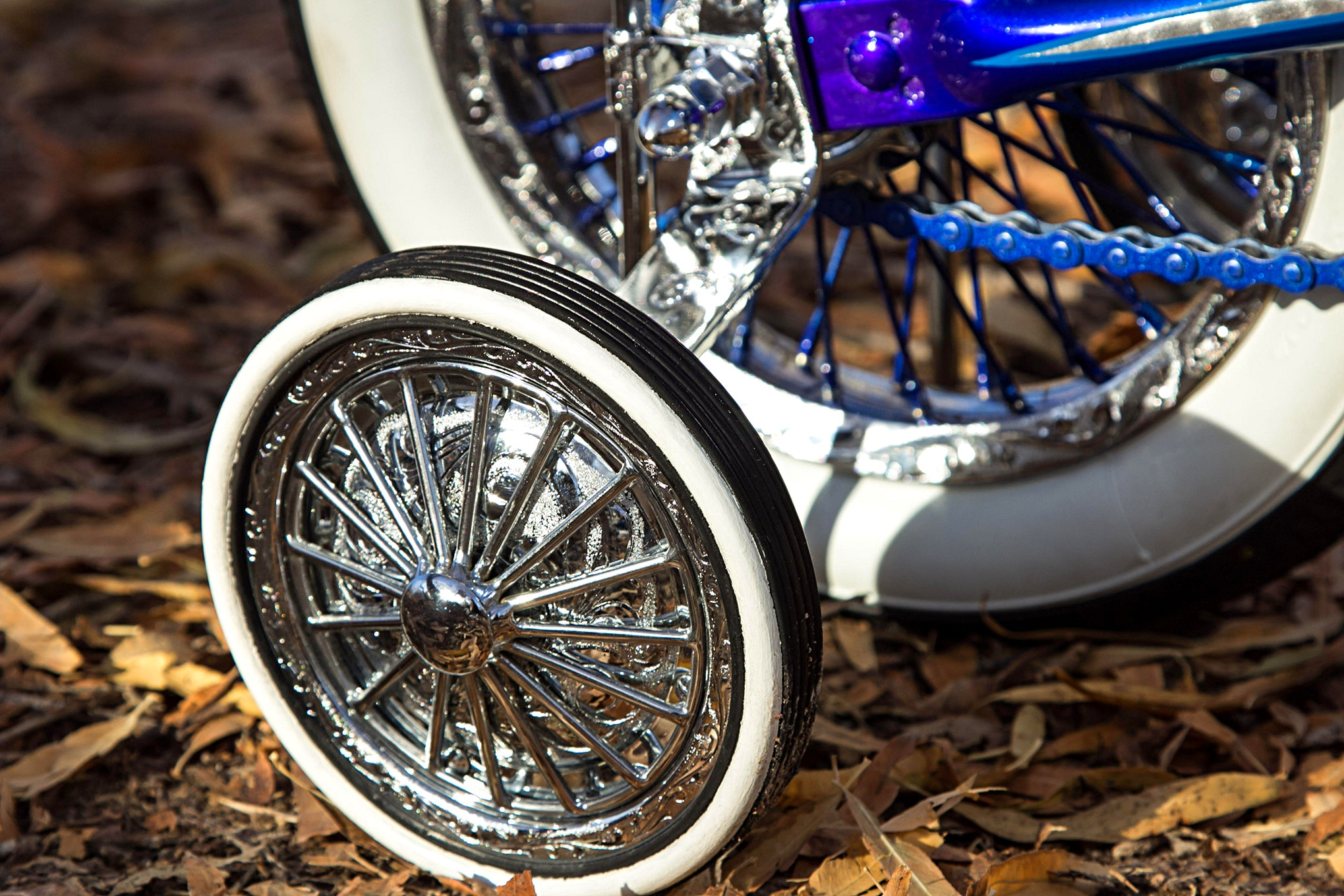 c546f15d179 schwinn lil tigers blue bike wheel - Lowrider